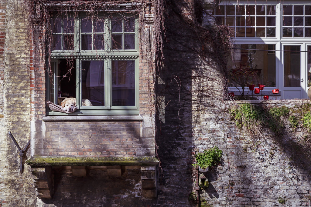 Brugge-1002.jpg