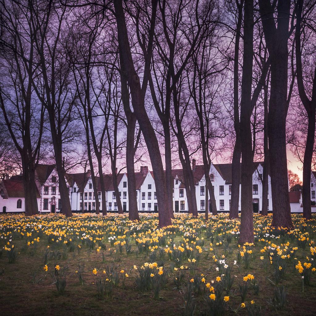 Brugge-1025.jpg