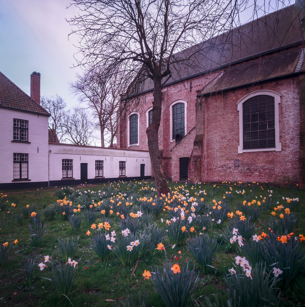 Brugge-1026.jpg